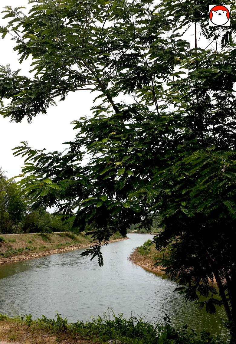 Chumporn Floodway 2